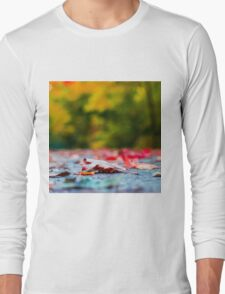 Colorful Fall Long Sleeve T-Shirt