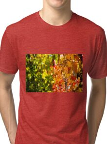 Colorful Fall Tri-blend T-Shirt