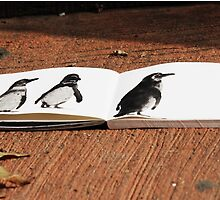 Penguins on Paper by TrottShots