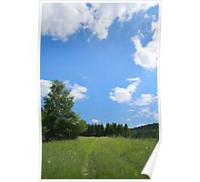 Summer landscape view with meadow road Poster