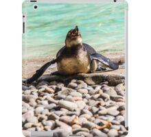 Belly Sliding Penguin iPad Case/Skin