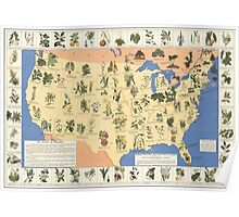 Amazing map of 'Herbal Cures' from 1932 Poster