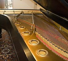 Inside The Piano by David DeWitt
