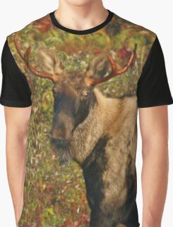Maine Bull Moose in the fall Graphic T-Shirt