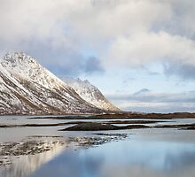 Lofoten Islands by Dominika Aniola