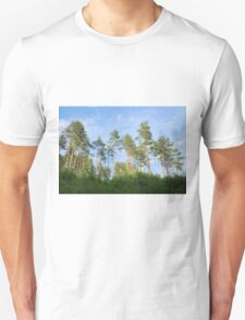 Pine forest in the summer T-Shirt