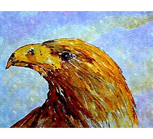 THE GOLDEN EAGLE Photographic Print