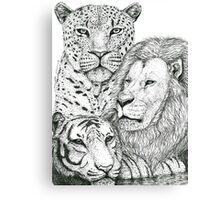 Big Cats Canvas Print