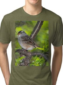 White-Crowned Sparrow Tri-blend T-Shirt