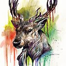 The Stag by WOLFSKULLJACK