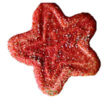 Christmas Cookie 3 Photographic Print