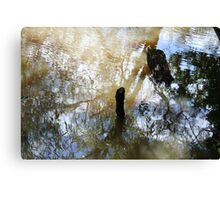 Beauty in nature - Dibbinsdale Nature Reserve 7 Canvas Print