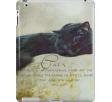 Cats are a mysterious kind of folk iPad Case/Skin