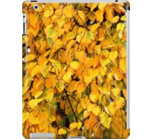 Autumn Leaves 4 iPad Case/Skin