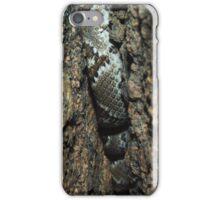 Arizona Diamondback iPhone Case/Skin