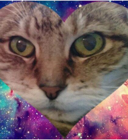 Funny Galaxy Cat  Sticker