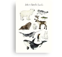 Arctic & Antarctic Animals Canvas Print