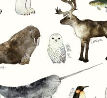 Arctic & Antarctic Animals Sticker