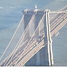 Aerial View, Brooklyn Bridge, One World Observatory, World Trade Center Observation Deck, Lower Manhattan, New York City by lenspiro