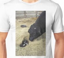 Variations on Hide and Seek! Unisex T-Shirt