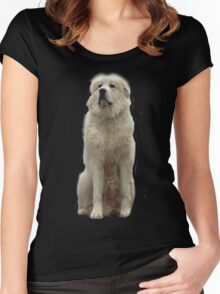 The Great Pyrenees mountain dog Women's Fitted Scoop T-Shirt
