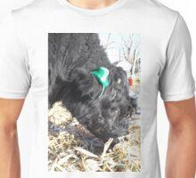 Jobie the Leprechaun Unisex T-Shirt