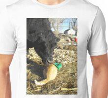 Thunder Paws the Leprechaun Unisex T-Shirt