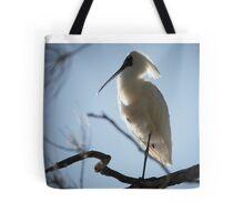 Royal Spoonbill ~ Goodnight Tote Bag