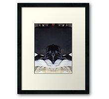 the spear head hound chillin Framed Print