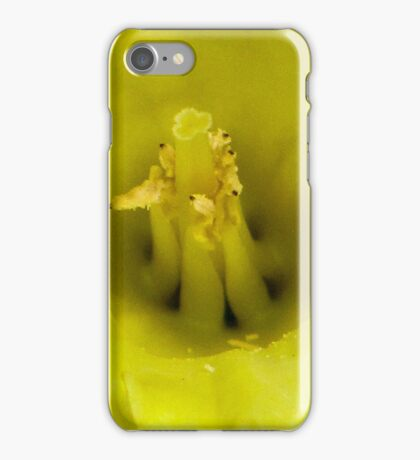 Daffodil - Yellow Centre iPhone Case/Skin