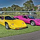 Yellow and Magenta Purvis Eurekas by Ferenghi