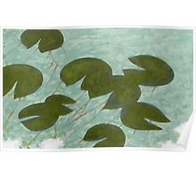 water lilies  (original sold) Poster