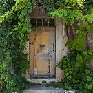Provence Door by artsandsoul