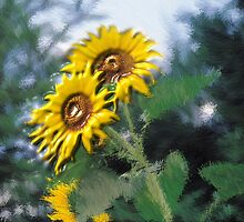 anthonys sunflowers by arteology