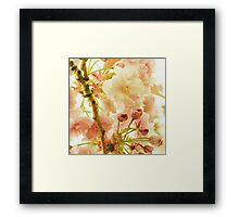 Dreaming in Blossoms Framed Print