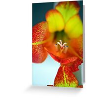 Sword Lilly Greeting Card