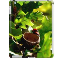 Ladybugs In Love iPad Case/Skin