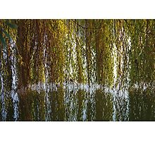 Curtains On The Water Photographic Print