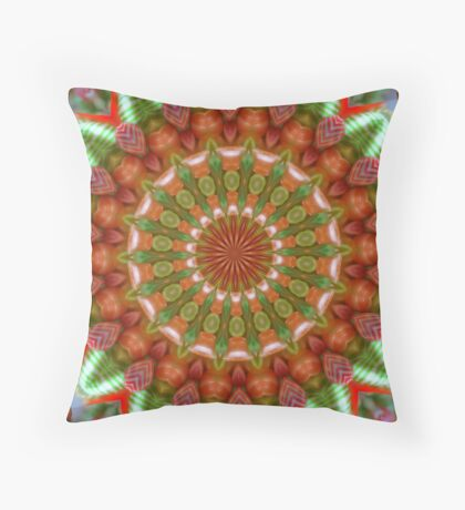 Fruit and Vegetable Colored Kaleidoscope Throw Pillow