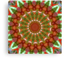 Fruit and Vegetable Colored Kaleidoscope Canvas Print
