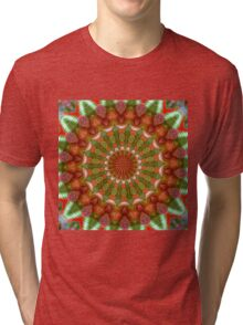 Fruit and Vegetable Colored Kaleidoscope Tri-blend T-Shirt