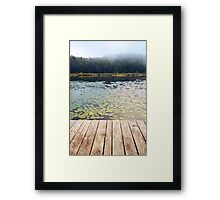 Pond of lilies  Framed Print