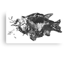 Prehistoric Fossil Fish Canvas Print