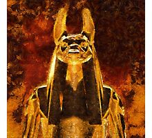 Anubis by Sarah Kirk Photographic Print
