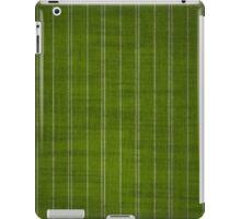 Green & Sliver PinStripes iPad Case/Skin