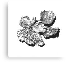 Decay - Flower Canvas Print
