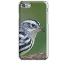 Black & White Warbler iPhone Case/Skin