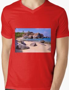 Baths BVI Mens V-Neck T-Shirt