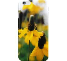 Yellow Mexican Hats iPhone Case/Skin