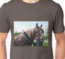 05-21-11 0945 belgian Unisex T-Shirt